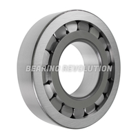 Non - Separable Type Radial Roller Bearings