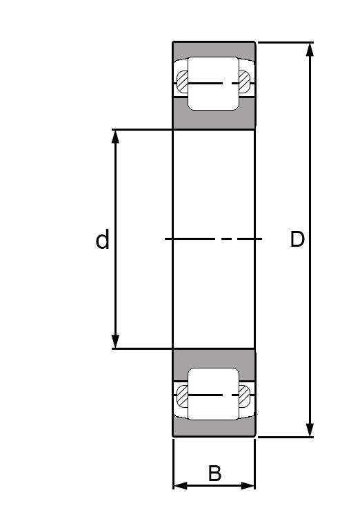 20211, Barrel Roller Bearing  - Premium Range Schematic