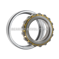 NF-Series Single Row Cylindrical Roller Bearings