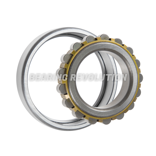 nf 309 c3 nf series cylindrical roller bearing with a. Black Bedroom Furniture Sets. Home Design Ideas