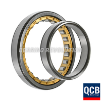 NU 1005 EMA C3, NU-Series Cylindrical Roller Bearing with a 25mm bore - Brass Cage - Select Range