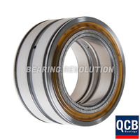 SL 04 5006 PP, Full Complement Cylindrical Roller Bearing with a 30mm bore - Select Range